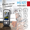 mini_ms_1177_8.jpg