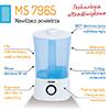 mini_ms_7965_7.jpg